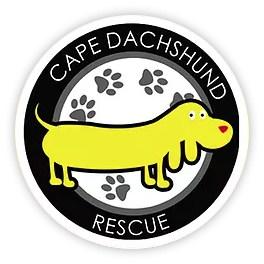 cape dachshund rescue