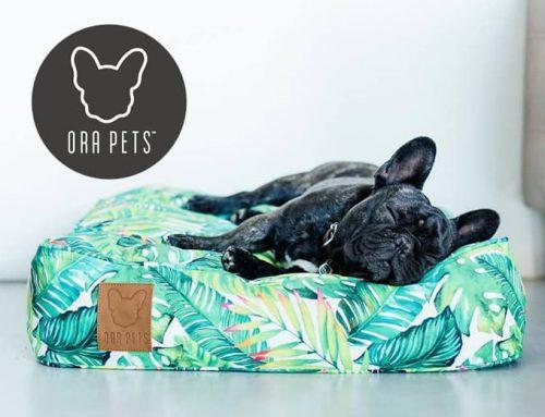 Ora Pets Recommends Vienna s Village
